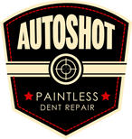 Auto Shot Paintless Dent Repair